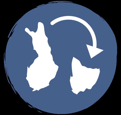 Helmi Tasmaniassa